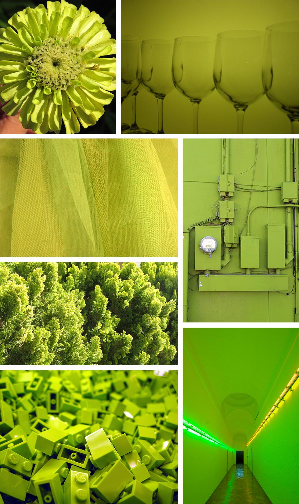 Found Color Palette: Chartreuse - Pattern Observer