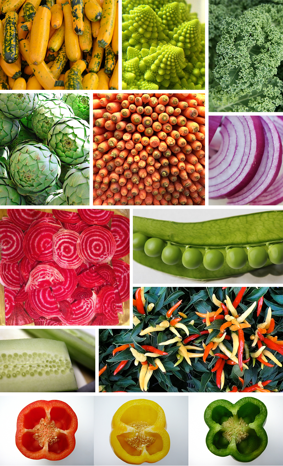 Pattern Observer Found Patterns - Vegetables https://patternobserver.com/2016/05/18/found-patterns-vegetables/ ‎